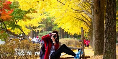 Du lịch Hàn Quốc - Khám phá mùa thu lá đỏ