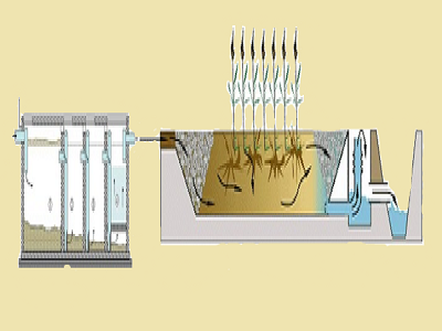 Bể xử lý nước thải chi phí thấp