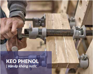 Keo Phenol