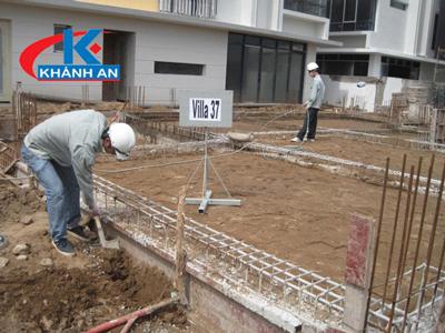 Dịch vụ phòng chống mối cho công trình xây dựng
