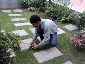 Dịch Vụ Chăm sóc Và Bảo Dưỡng Cảnh Quan Sân Vườn
