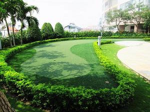 Dịch Vụ Thiết Kế - Thi Công Cảnh Quan Sân Vườn