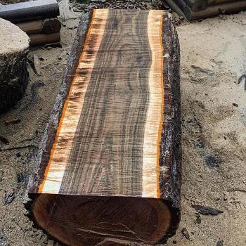Gỗ Óc Chó Tròn (Black Walnut Logs)