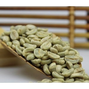 Cà phê hạt Typica