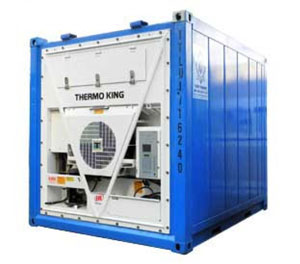 Container lạnh 10 Feet
