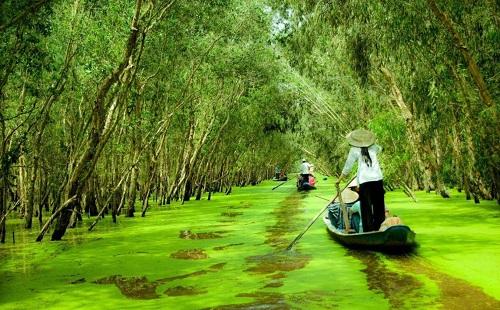 Tour Châu Đốc - Trà Sưa mùa nước nổi