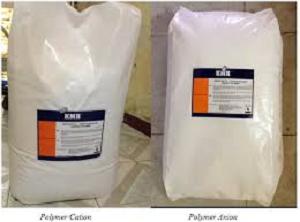 Polymer Anion