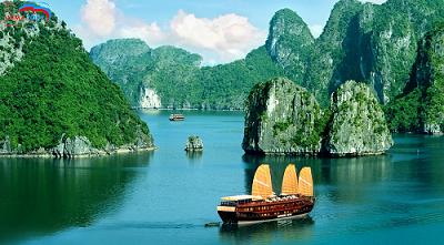 Tour Du Lịch Hạ Long - Tuần Châu du thuyền Lavender