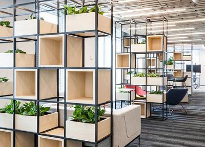 Thiết kế xanh hóa không gian văn phòng