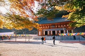 Du lịch Hàn Quốc giá hot