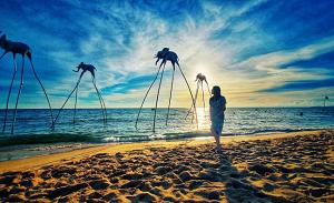Tour Trọn Gói Đảo Ngọc Phú Quốc 4N3Đ
